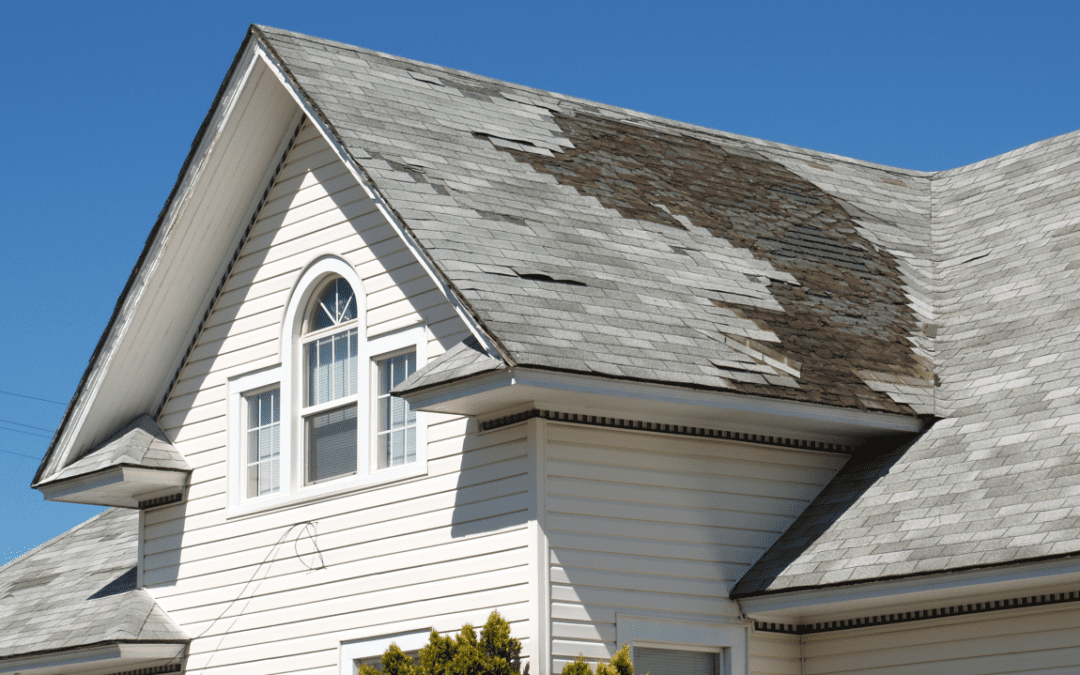 Your Guide for Dealing with Windstorms