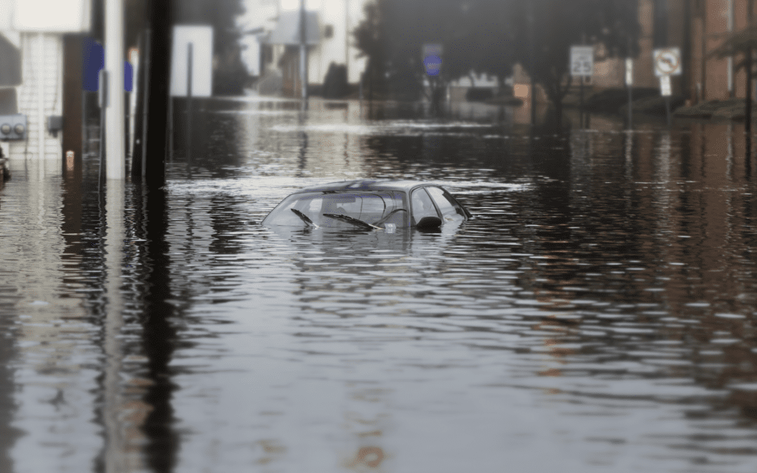 Your Guide for Dealing with Floods and Rain Storms