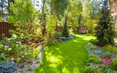 How to Create a Beautiful Home Garden This Spring