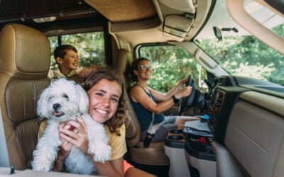 The Best Solutions on the Market in 2021 for Safe RVing with Pets and Children