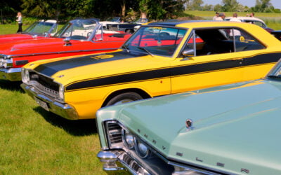 Top Collector Cars for Newbies Building their Collection